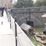 Экскурсия в замок Конопиште 2014 Не бегайте в метро (Прага)