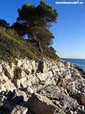 Берег Святого Клементина Хорватия отдых 2013