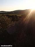 Центр острова Клементина Хорватия отдых 2013