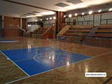Спорт Экономическая частная средняя школа Прага