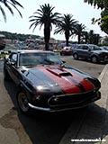 Форд Мустанг Хорватия отдых 2013