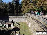 Медведь Замок Конопиште  и Масса впечатлений в «посольстве охоты»