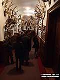 Рога Замок Конопиште  и Масса впечатлений в «посольстве охоты»