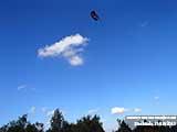 Воздушный змей Воздушные змеи